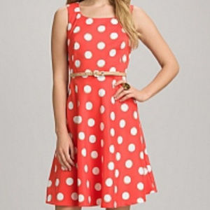 Dress Barn Orange Polka Dot Fit & Flare Dress - 4